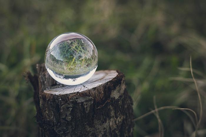 Boule de cristal sur un tronc d'arbre coupé